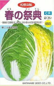野菜種子 ハクサイ 『 渡辺採種場 』 春の祭典 1ml袋詰 【 送料無料 】