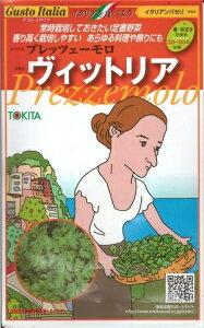野菜種子 『トキタ種苗』 イタリアンパセリ種子 プレッツェーモロ ヴィットリア 200粒袋詰 【送料無料】