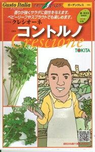 野菜種子 『トキタ種苗』 ガーデンクレス種子 クレシオーネ コントルノ 1000粒袋詰 【送料無料】