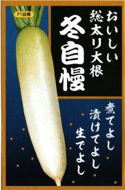 ダイコン  (サカタのタネ)  冬自慢  18ml詰         【送料無料】