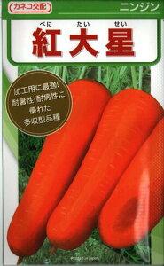 野菜種子 ニンジンたね (かねこ種苗) 紅大星 20ml袋詰 【送料無料】