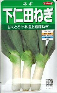 野菜種子 ネギたね (サカタのタネ) 下仁田ねぎ 6ml袋詰 (約800粒) 【送料無料】