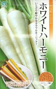 野菜種子 『丸種株式会社』 ニンジンたね ホワイトハーモニーにんじん 320粒袋詰 【送料無料】