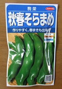 野菜種子 『サカタのタネ』 秋春そらまめタネ 駒栄 28ml袋詰 (約5本) 【送料無料】