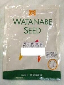 野菜種子 カボチャ種子 『 渡辺採種場 』 白爵 500粒袋詰 【 送料無料 】