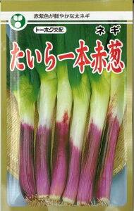 野菜種子 『葱タネ』 トーホク交配 (東北種苗) たいら一本赤葱 10ml袋詰 【送料無料】