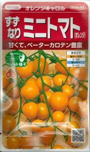 野菜種子 『ミニトマトタネ』 サカタ交配 (サカタのタネ) オレンジキャロル 13粒袋詰 【送料無料】