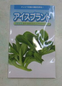 野菜種子 『アイスプラントたね』 (武蔵野種苗園) プチサララ コート60粒袋詰【送料無料】