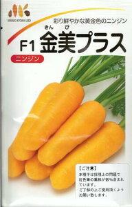 野菜種子 『ニンジンたね』 (みかど協和) 金美プラス 6ml袋詰【送料無料】