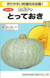 野菜種子『かぼちゃたね』松島交配 (渡辺採種場) とっておき 500粒袋詰【送料無料】