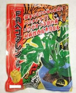 野菜種子 『西瓜用ユウガオ台木』ナント交配 ナント種苗 FR−ヘコタレン 400粒袋詰 【送料無料】