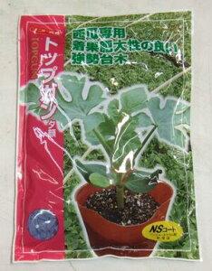野菜種子 『スイカ用ユウガオ台木たね』 ナント育成 (ナント種苗) トップガン 2000粒袋詰 【送料無料】