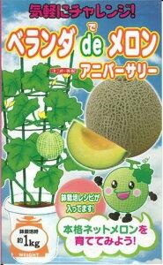 野菜種子 『ベランダdeメロンたね』 ナント交配 (ナント種苗) アニバーサリー 6粒袋詰 【送料無料】