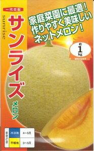 野菜種子 『メロンたね』 一代交配 ナント種苗 『露地deメロン』ことサンライズ 100粒袋詰 【送料無料】