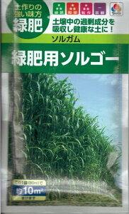 牧草種子 『 タキイ種苗 』 ソルガム(緑肥用ソルゴー) 60ml袋詰 【 送料無料 】