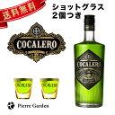 コカレロ ショットグラス 2個付き 700ml 29度 COCALERO クラブ バー ハーブリキュール 度数が高い お酒 コカの葉 ハ…