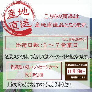 直送/送料無料抗菌防臭ダイニングラグ(ブラック)〈ファーロ〉(co)