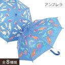 色が変わる カサ 子供 かわいい おしゃれ カラフル 丈夫 北欧 カラー 大きい 傘 かさ 子ども 幼稚園 小学校 こども 水…