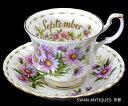 ロイヤルアルバート (Royal Albert) フラワー オブ ザ マンス 9月 デイジー カップ&ソーサー England 廃版品 未使用