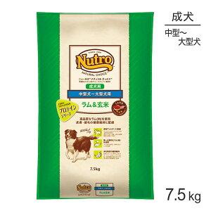 ニュートロ ナチュラルチョイス プロテインシリーズ ラム&玄米 中型犬〜大型犬 成犬用 7.5kg[正規品]