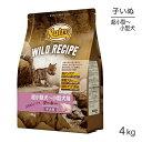 [正規品]ニュートロ ワイルドレシピ 超小型犬〜小型犬用 子犬用 ターキー 4kg