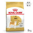 ロイヤルカナン 柴犬 成犬用 8kg [正規品]