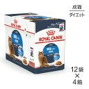 【85g×48袋セット】ロイヤルカナン FCN-WET ウルトラ ライト 85g×48袋