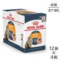 【85g×48袋セット】ロイヤルカナン FCN-WET インテンス ビューティ 85g×48袋