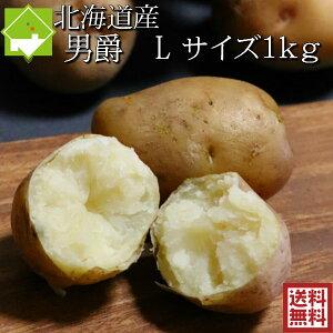じゃがいも 男爵 送料無料 1kg Lサイズ 北海道産 ジャガイモ 別途送料が発生する地域あり