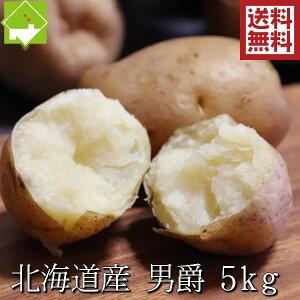 じゃがいも 男爵 送料無料 5kg Lサイズ 北海道産 ジャガイモ 別途送料が発生する地域あり