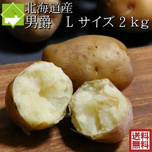 じゃがいも 男爵 送料無料 2kg Lサイズ 北海道産 ジャガイモ 別途送料が発生する地域あり