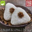 白米 20kg 送料無料 ふっくりんこ 北海道富良野産 令和2年産 別途送料が発生する地域あり