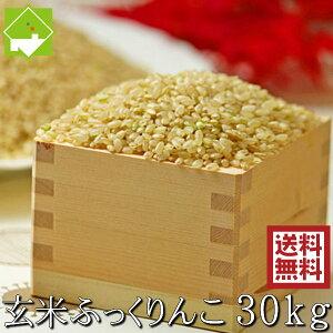 玄米 30kg 送料無料 ふっくりんこ 北海道富良野産 令和3年産