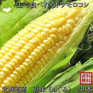 とうもろこし 送料無料 低農薬栽培 北海道産 生で食べれる 恵味(めぐみ) 20本 別途送料が発生する地域あり 日時指定不可