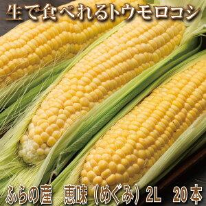とうもろこし 送料無料 低農薬栽培 北海道ふらの産 生で食べれる 恵味(めぐみ)2Lサイズ 20本 別途送料が発生する地域あり 日時指定不可