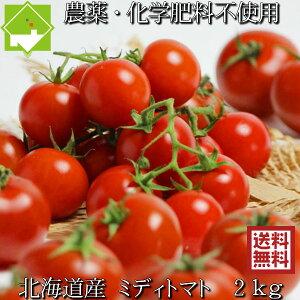 トマト 送料無料 農薬使用ゼロ 完熟 ミディトマト 2kg 北海道産 別途送料が発生する地域あり 日時指定不可 7月下旬発送開始