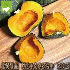 かぼちゃ 送料無料 北海道 富良野産 坊ちゃんかぼちゃ 20玉