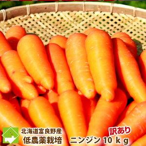 にんじん 訳あり 10kg 北海道 富良野産 人参 送料無料 別途送料が発生する地域あり 日時指定不可