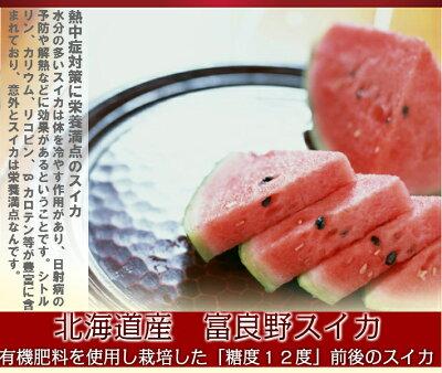すいか北海道富良野産スイカLサイズ5kg1玉送料無料