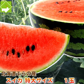 すいか 北海道富良野産 富良野スイカ 3Lサイズ 7.5kg以上 1玉