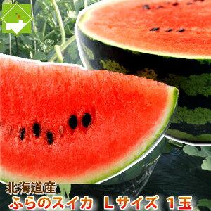 北海道富良野産 有機肥料でとっても甘く育ったスイカ Lサイズ(5kg以上) 1玉