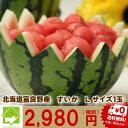 すいか 北海道 富良野産 Lサイズ 5kg以上 1玉 送料無料