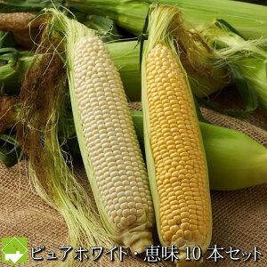 とうもろこし 北海道富良野産 秀品 2Lサイズ ピュアホワイト5本・恵味(めぐみ)5本 計10本 送料無料 別途送料が発生する地域あり