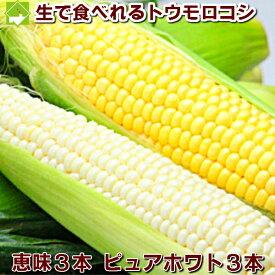 生で食べれるとうもろこし 北海道富良野産 秀品 2Lサイズ ピュアホワイト3本・恵味3本 【送料無料】