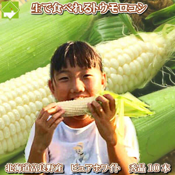 北海道富良野産 ピュアホワイト 10本入(Mから2L込)【送料無料】【10P03Dec16】