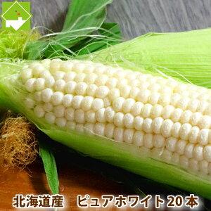 とうもろこし 北海道富良野産 ピュアホワイト 20本入