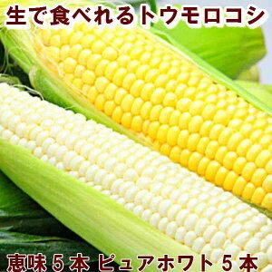 とうもろこし 北海道富良野産2色の トウモロコシ セット ピュアホワイト5本・恵味5本