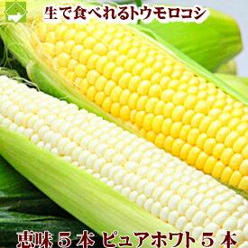 とうもろこし 北海道富良野産 ピュアホワイト5本・恵味5本 【送料無料】 別途送料が発生する地域あり