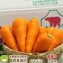 北海道富良野産 低農薬栽培 訳あり(規格外) 人参(にんじん) (SサイズからLサイズ込) 5kg 送料無料