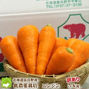 北海道富良野産 低農薬栽培 訳あり(規格外) 人参(にんじん) (SサイズからLサイズ込) 5kg 【同梱不可】
